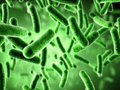 Дисбактериоз. Правильное питание, народные рецепты