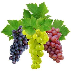 Виноград полезные свойства противопоказани